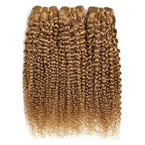 FEEL ME Brazilian Curly Human Hair Bundles Color 27 Honey Blonde Brazilian Hair Weave 3 Bundles Unprocessed 8A Mink Afro Kinky Curly Virgin Human Hair Extensions 12 14 16