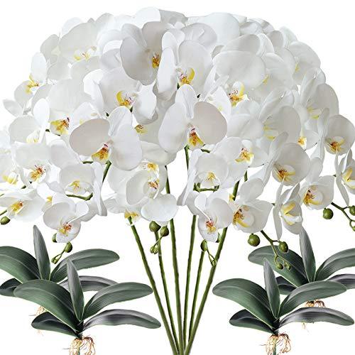 FagusHome 6 Stück künstliche Phalaenopsis Orchideen Blumen Weiß mit 4 Bündeln Künstliche Orchidee Blätter für Deko