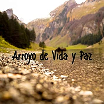 Arroyo de Vida y Paz