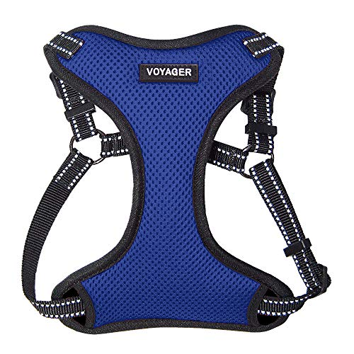 Voyager Step-In Flex Dog Harness - All Weather Mesh, Step In Adjustable Harness for Small and Medium Dogs by Best Pet Supplies - Royal Blue, Medium (213-RB-M)