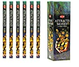 India HEM Attracts Money Incense 6 Packs X 8 Sticks, Wicca Pagan 8 Gm Square Box by Hem