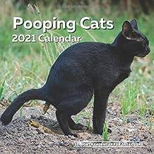 Kalender för bajskatter 2021: Rolig kattälskare väggkalender skämt gåva – kvinnor, män, galen dam, födelsedag, vit elefant...