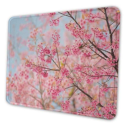 Floral Cute Mouse Pad Japanische Sakura Kirschblütenzweige voller Frühlingsschönheit Bild rutschfeste Mauspad hellrosa Babyblau