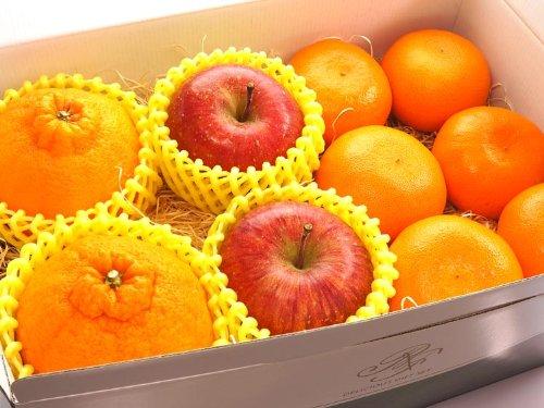 果物 ギフト デコポン せとか サンふじ りんご 詰め合わせ 贈答用 箱入り