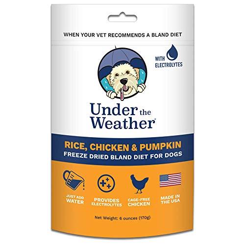 Under the Weather Pets | Rice, Chicken & Pumpkin |...