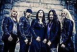JUNLIZHU Nightwish (53cm x 35cm | 21inch x 14inch) Silk