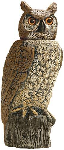 Dalen Gardeneer 100055888 Gardeneer by Dalen Solar Action Owl Natural Scarecrow Device, 18in, 18 in,...