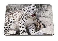 22cmx18cm マウスパッド (赤ちゃんオンス口岩ユキヒョウ) パターンカスタムの マウスパッド