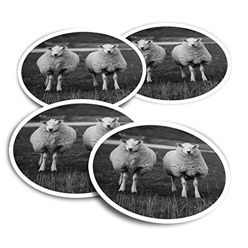 Adesivi in vinile (set di 4) 10 cm – BW – Pecore Flock Farm Farmer Fun Decalcomanie per computer portatili, tablet, bagagli, libri di rottami, frigoriferi #36688