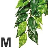 【完全版】小型の樹上棲爬虫類・両生類の飼育に必要なグッズ・機材・設備まとめ - 【完全版】小型の樹上棲爬虫類・両生類の飼育に必要なグッズ・機材・設備まとめ