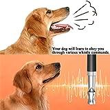 Ploopy Hochfrequenzpfeife, Ultraschall Hundepfeife, Ultraschallpfeife fur Hunde Outdoor Survival Notfallexploring, Ultraschall Hundetraining Whistle und Hundeclicker Schwarz - 7
