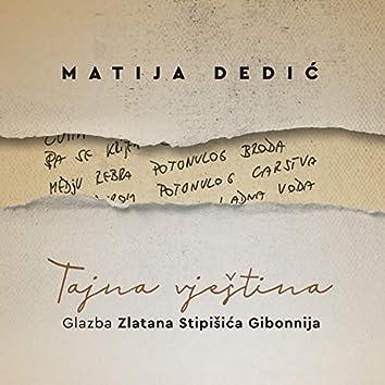 Tajna Vještina - Glazba Zlatana Stipišića Gibonnija