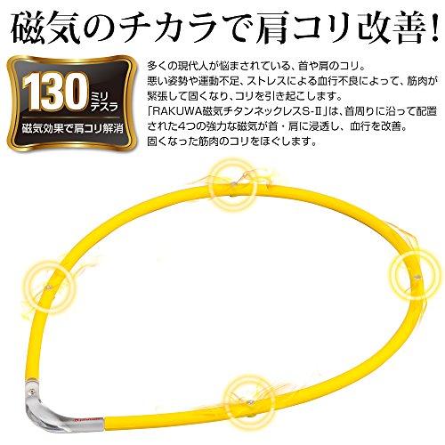 Phiten(ファイテン)『RAKUWA磁気チタンネックレスS-2』