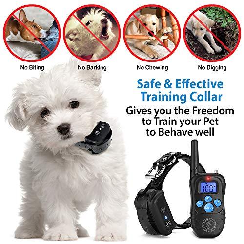 Puss & Pooch Dog Training Collar