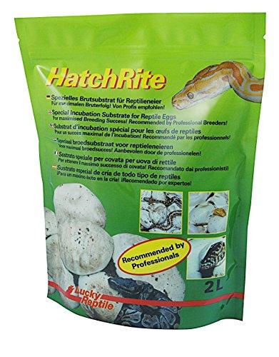 Lucky Reptile HR-2 HatchRite, 2 Liter, Brutsubstrat