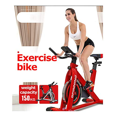 Indoor Cycling Bike, Belt Drive Indoor Exercise Bike, Stationary Bike for Home Cardio Workout Bike Training