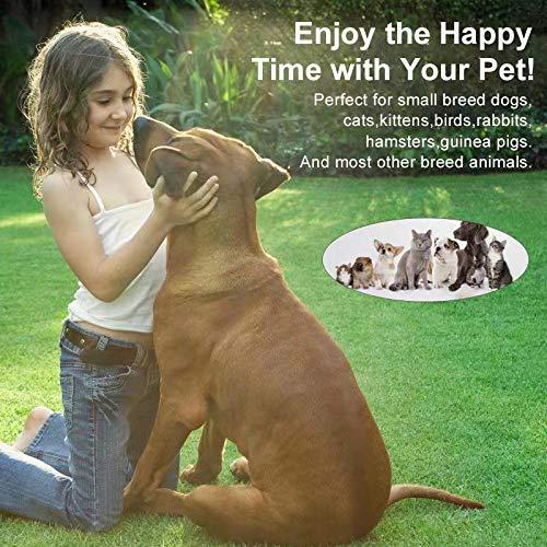 HABOM Dog