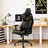 KARNOX Gaming Chair high Back, Lengnd-BK Reclining Gaming Ergonomic backrest Chair with Reclining Maximum 155°,360° Caster Wheels Dynamic Movement, with Adjustable 4D armrest Video Gaming Chairs.
