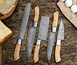 Juego de cuchillos de chef de acero de Damasco, juego de cuchillos de cocina, juego de cuchillos hechos a mano