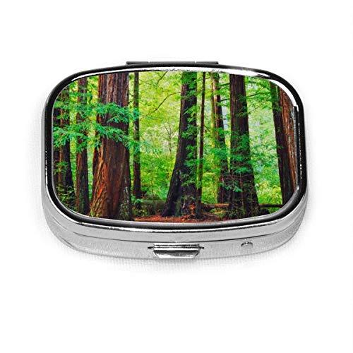 Pill Box Redwood Bäume Nordwesten Regenwald Tropical Scenic Wild Nature Lush Branch Pill Boxes