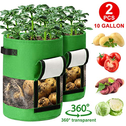 CAVEEN Pflanzen Taschen 360° Sichtfenster Pflanzsack Kartoffel, Blumentöpfe Möhren Tomaten Pflanzbeutel mit Griffen Klettverschluss Atmungsaktiv Pflanztasche aus Vliesstoff, Grün (10 Gallon)