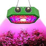 QIDIAN 1100W COB pianta del LED coltiva la Luce, Regolabile Full Spectrum Doppia accensione Impianto con Sistema di dissipazione di Calore per Le Piante d'Veg, Fiore, Cannabis, piantine