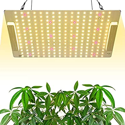 Amazon - 50% Off on  Upgraded LG1000 LED Grow Light with Samsung Diodes 3x3ft Coverage