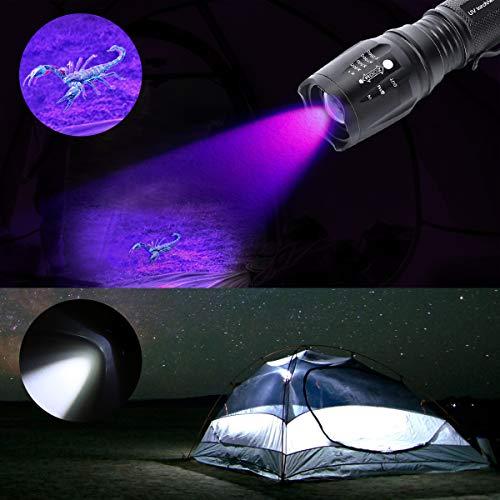 Didisky 2 en 1 Lampe Torche LED, Lampe de Poche Tactique et Lampe Torche UV, 395 nm Ultra Violet Détecteur pour Traceurs Fluorescents [Rechargeable Torche LED]
