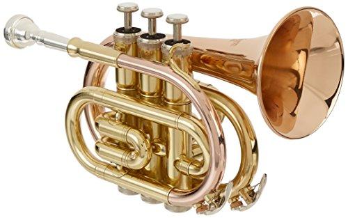 Roy Benson Rb701012 Tromba Pocket in Sib Pt-101G, Laccata Chiara, Astuccio Rettangolare