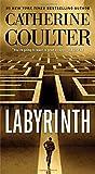 Labyrinth (Volume 23) (An FBI Thriller)
