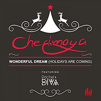 Wonderful Dream (Holidays Are Coming)