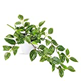 SOGUYI Plantas Artificiales 25cm Decoración de Plantas Artificiales de Plástico Muy Realista de Color Verde, Adecuada para la Decoración Moderna de la Oficina de la Sala de Estar del Hogar