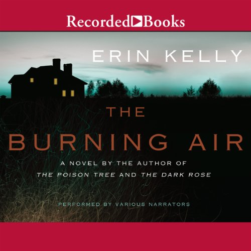 The Burning Air audiobook cover art