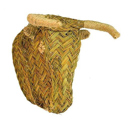 BicocaWeb Cabeza de Toro de Esparto