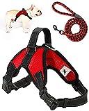 Trongle Arnés para Perros , Arnés Ajustable para Perros Pequeños Fácil de Controlar, Cómodo Al Tacto Arnés para Perros Suavey Transpirable, Cinturón de Nailon con Malla de Aire Ajustable(Rojo, S)