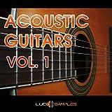 Sample Pack « Acoustic Guitars Vol. 1 » est une collection des riffs de guitare acoustique de l'ambiance de pop/ rock/ ballade pretes a utiliser. Les sons des guitares sont clairs...| DVD no...