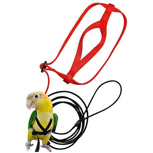 bozitian Papagei Einstellbare Vogelgeschirr Und Leine Anti-Biss Traktion Vogel Trainingsseil Für Vogel Papagei Afrikanischen Grau Kakadu Ara Ringneck Sittich Nymphensittich (1 Stücke Zufällige Farbe)