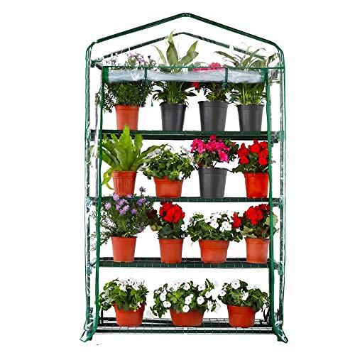 Worth Garden 102cm Breit 4 Etagen Gewächshaus mit PVC-Plane Abdeckung und Reißverschluss 160 x 102 x 49cm HxBxT Transparent Treibhaus Tomatenhaus Pflanzenhaus