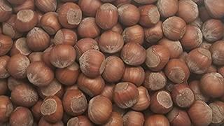 Filberts/Hazelnuts,