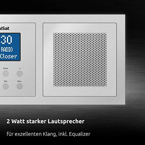 TechniSat DIGITRADIO UP 1 - DAB+ Unterputzradio zur Anbringung in jeder Doppel Unterputzdose (DAB, UKW, Bluetooth-Empfang, dimmbares LCD-Display, Wecker, Sleeptimer, 2 Watt RMS, Equalizer) silber