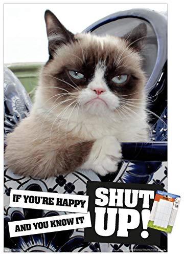 Trends International Grumpy Cat - Shut Up Wall Poster, 22.375' x 34', Poster & Mount Bundle