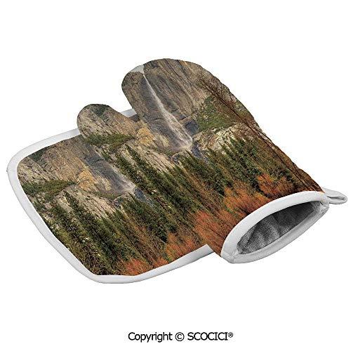 Best oven mitt yosemite on the market 2020