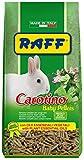 Raff Carotino Baby pellets alimento Completo per Conigli Nani 900g