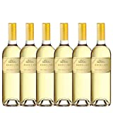 Exquisite ANSELMI SAN VINCENZO 2019 White Wine for NZ Sauvignon Blanc Lovers! (