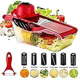 Chanhan - Rallador de verduras con mandolina, cortador de alimentos, cortador de cocina, 6 cuchillas intercambiables de acero inoxidable, protector de manos, recipiente de almacenamiento de alimentos