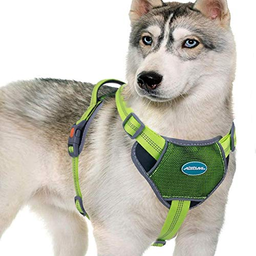 ThinkPet Soft Padded Dog Harness, Full Adjustable Reflective Neoprene Dog Vest with Easy Control Handle for Daily Walking and Training, for Small Dogs(XL, Green)