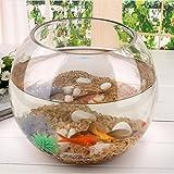 LOVIVER Acquario per Pesci Tondo Trasparente Cristallo Ampolla Boccia in Vetro per Decorazione per Casa o L'Ufficio