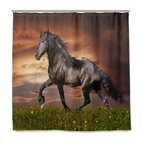 vinlin Kunst-Gemälde Pferd, wasserfest, Badezimmerzubehör, Duschvorhang, 167,6 x 182,9 cm, Polyester, Multi, 72x72 inch