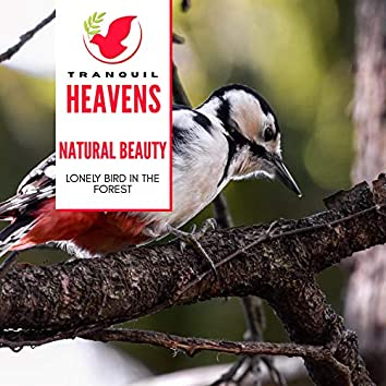 Natural Beauty - Lonely Bird in the Forest