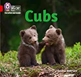 Collins Big Cat Phonics for Letters and Sounds – Cubs: Band 02A/Red A: Band 2a/Red (English Edition)